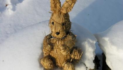 Hase im Schnee: Ostergrüße mit heißer Suppe!