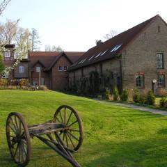 Querdenken: Hochzeit im Märchenschloss oder im eigenen Garten?